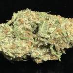 White Fire OG - Special Price $125 oz