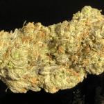 PINKMAN GOO 18-25% THC - Special $150oz!