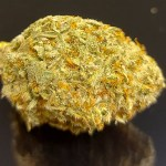 NEW! PURPLE CANDY - SPECIAL PRICE $135 OZ!