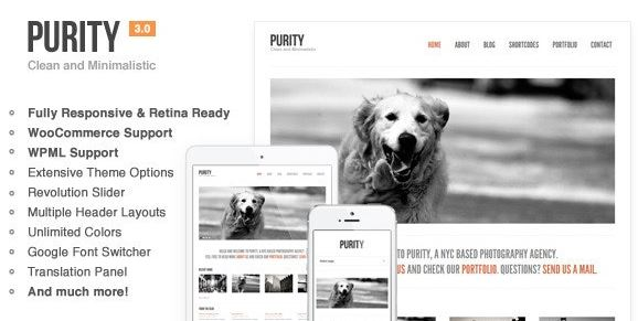 Purity - Responsive, Minimal & Bold WP Theme