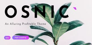 Osnic - Adsense WordPress Theme