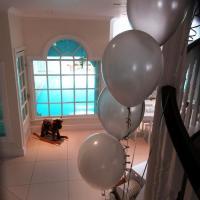 balloon-gallery-single-latex-4