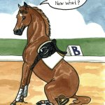 Funny Funny Horse Quotes Funny