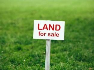 Land for sale in Zandouka