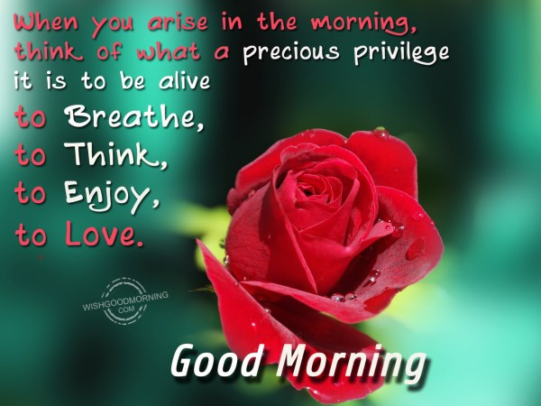 good morning (1)