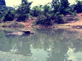 laos-3