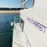 Paraíso na Ria Formosa: os Barcos-Casa da Fuzeta