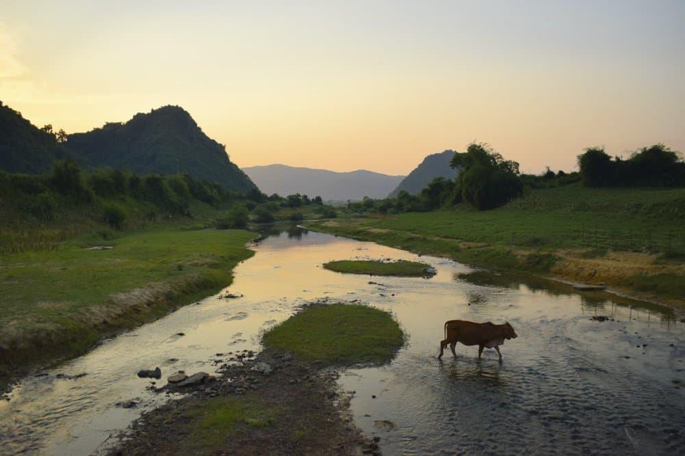Phong Nha Vietname