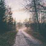 winter wishlist | life things