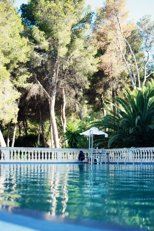 pool-and-palm-trees