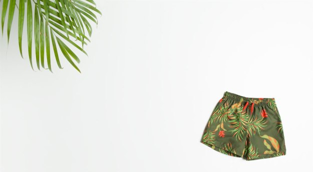 Zara bermuda tropical