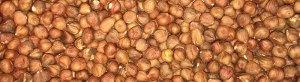 Hazelnuts/Filberts