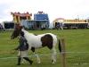 wensleydaleshow2011-13