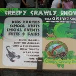 The Creepy Crawly Show | Children's Entertainment