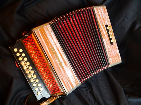 Hohner Melodeon A/D  (or C#/D)