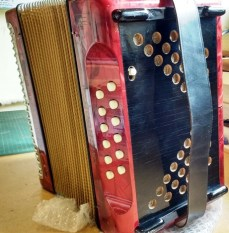 Hohner Trichord II side