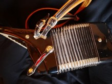 Parrot accordion 30 key #3