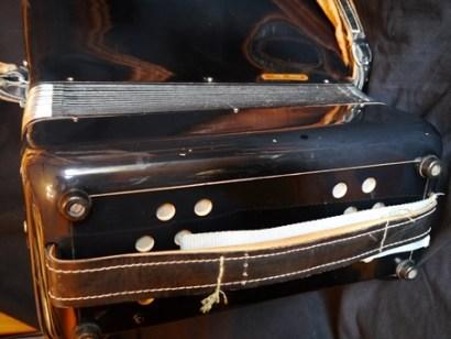 Parrot accordion 30 key#4