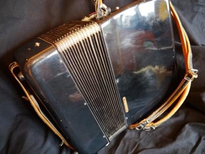 Parrot accordion 30 key#5