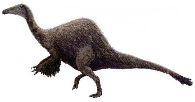 Deinocheirus mirificus restoration
