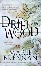 Book cover: Driftwood