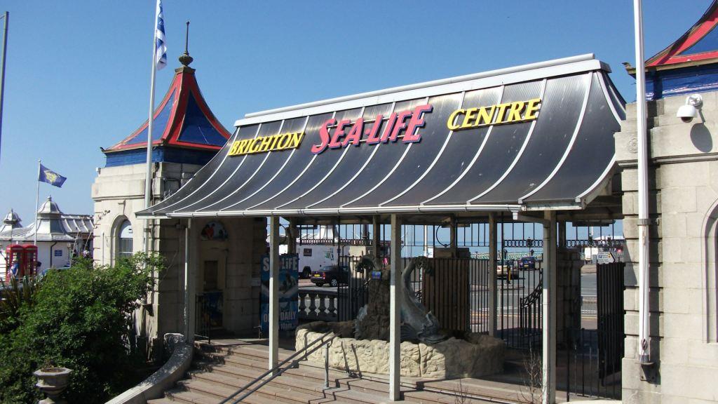 Sealife Center Brighton