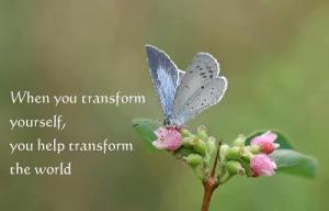 transform-yourself