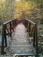 Another calendar-worthy Old Rag subject, this time of a pedestrian bridge on the downhill portion of Old Rag.