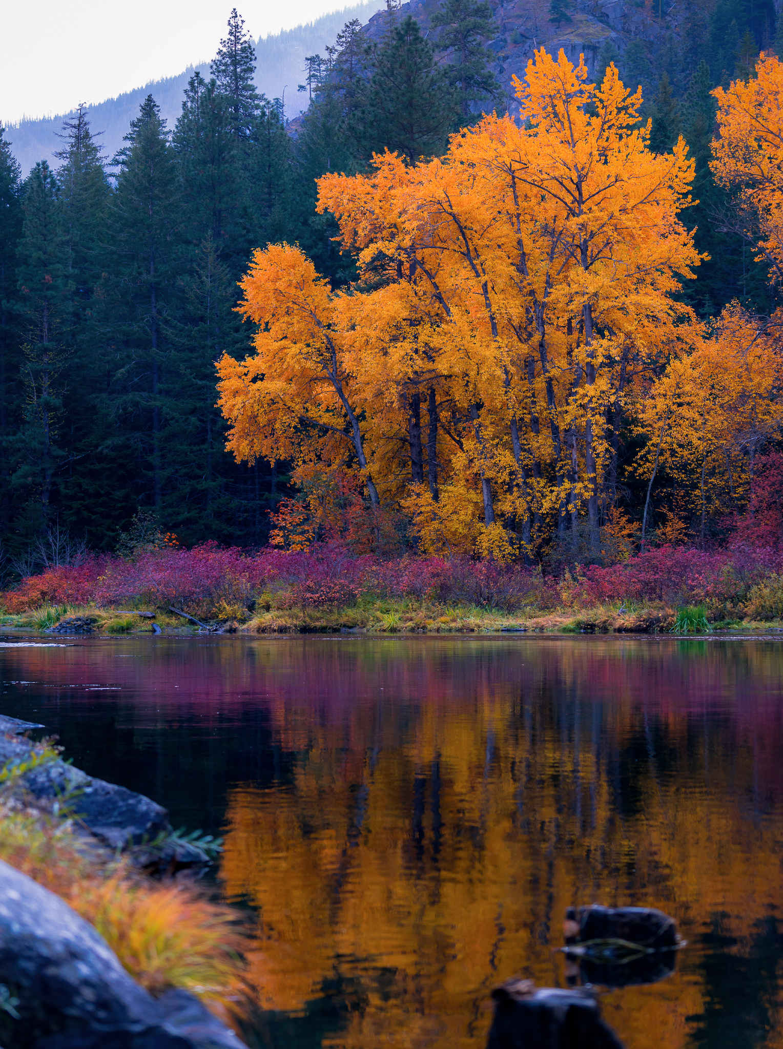 Colorful Fall Reflection on the Wenatchee River