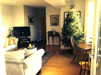 Living Room with a Christmas Tree