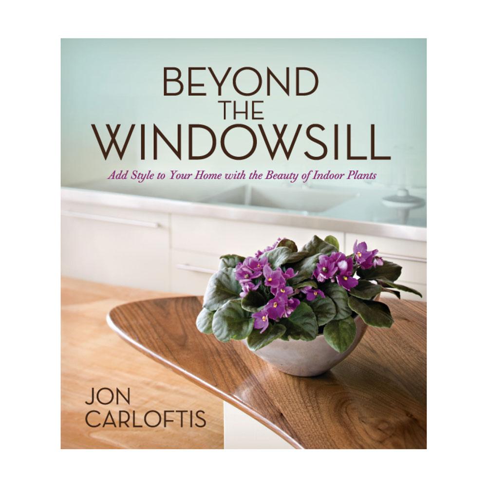 Beyond The Windowsill