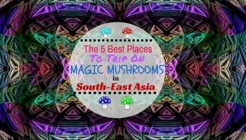 MAGIC MUSHROOMS IN INDONESIA | Gili Trawangan & Gili Air [2019]