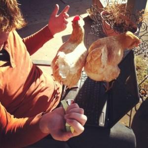Techno chickens