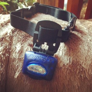 pup light collar