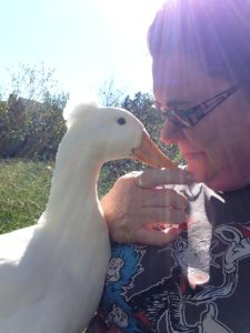 A sunny day with Jimmy the Duck - no elephants in sight