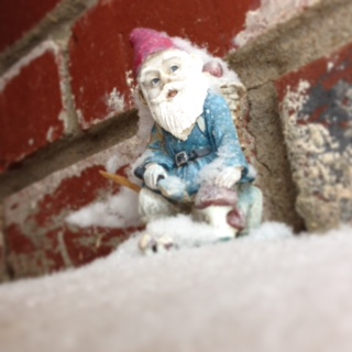 It's a cold gnome
