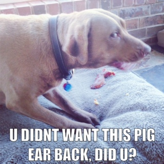 Ash eats an Other Ear