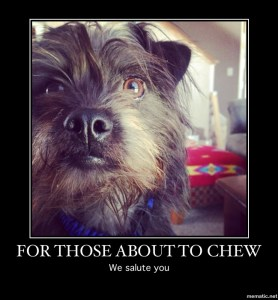 For those about to chew ...