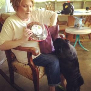 A Pug mama and treats