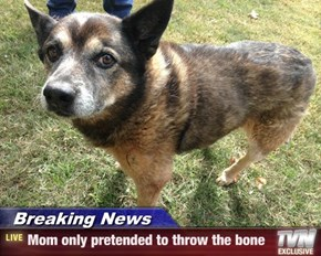 Breaking news - mom only pretended to throw the ball