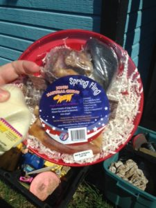 Spring Fling - a flying disk full of yummy dog treats!