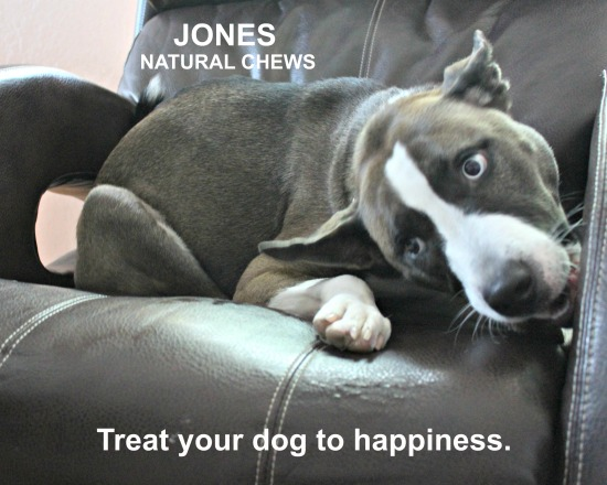 Bully Basted Ch'Earz from Jones Natural Chews - Treat your dog to happiness