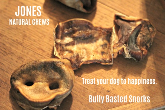 Bully Basted Snorks - the latest treats from Jones Natural Chews