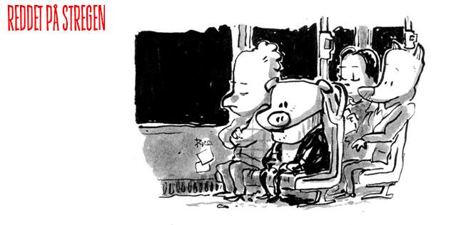 Natbus tegneserie web