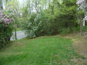 Left side yard all mowed