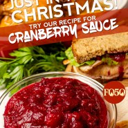 holiday cranberry sauce instagram graphic design