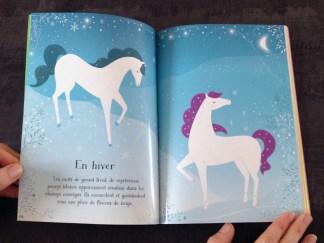 Le livre a de belles illustrations.
