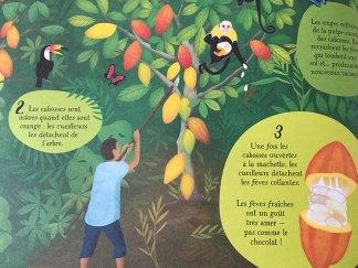 L'enfant peut découvrir d'où viennent les produits qu'il consomme.
