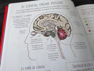 livre corps humain collège