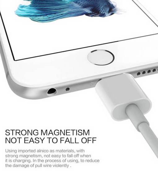 magnetic_charge